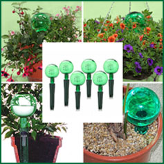 Holiday Watering Kit